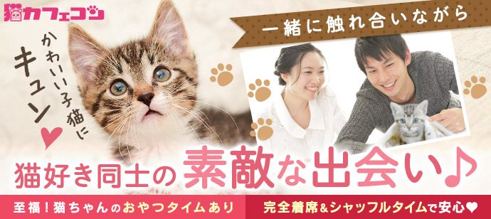 【女性1000円】人気の猫カフェを貸切☆猫カフェコン【至福のおやつタイムあり☆女性お一人参加多数♪】
