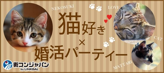 猫好き限定☆カジュアル婚活パーティー