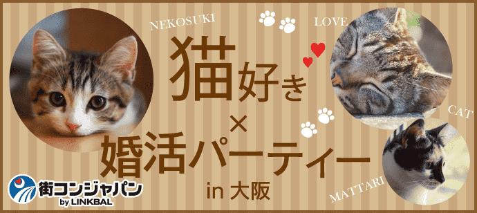 【猫好き限定★料理付】婚活パーティーin大阪