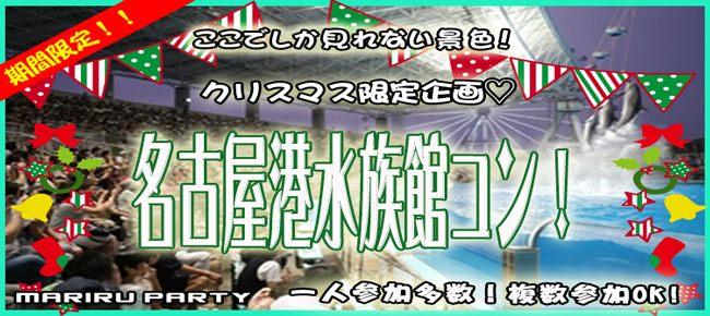 12月24日(月)クリスマス特別企画!!一人参加限定!名古屋港ナイト水族館コン!