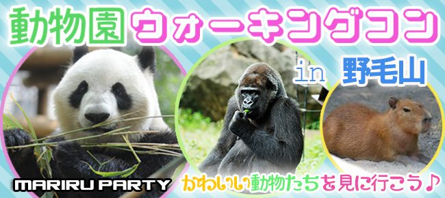 1/29 横浜の穴場デートスポットで出会おう♡ 動物好きに悪い人はいない♪ 野毛山動物園ウォーキングコン☆ 愛くるしい動物達が男女恋をサポート♡