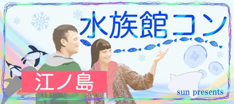 【神奈川県藤沢の体験コン・アクティビティー】イベントsun主催 2019年1月20日
