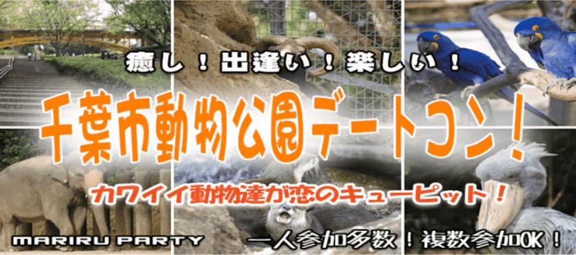 2/24 可愛い過ぎるレッサーパンダが大人気♡ 人混みの少ない穴場デートスポットでゆったり出会える♪ 千葉市動物園デートコン☆ 愛くるしい動物達が男女の恋をサポート♡