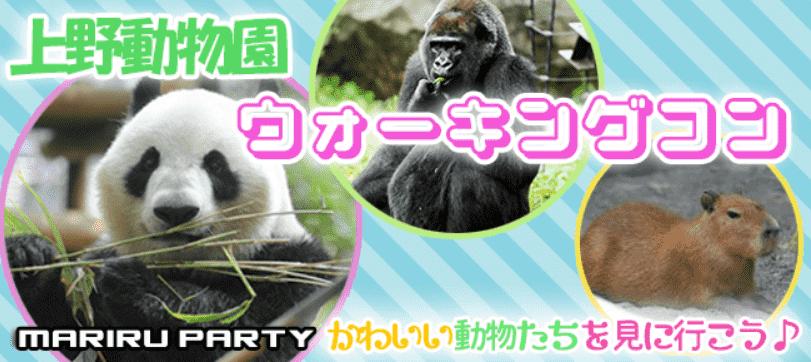 2/24 【一人参加限定企画】  実は朝活に興味がある方限定♡  ちょっと早起きして楽しむ♪上野動物園ウォーキングコン☆ 愛くるしい動物達が男女恋をサポート♡