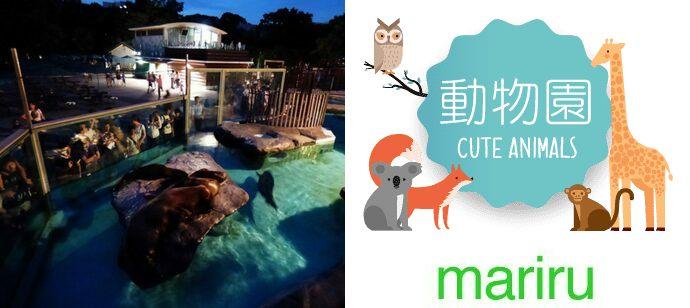 【8月だけの限定企画】 一人参加限定! 明るい時とは一味違う!ナイト上野動物園ウォーキングコン♡ 8/12開催