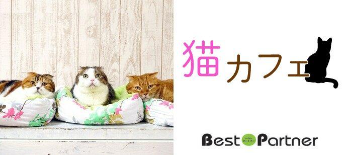 【神奈川】9/8(日)横浜ニャンコン@趣味コン/趣味活◆猫カフェ完全貸切!動物好きな方と出会える☆《同年代限定》