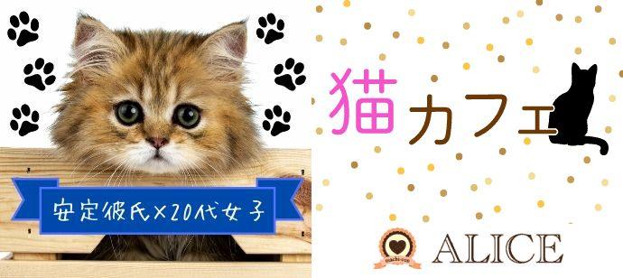 【感染対策済!】猫カフェコン★  ~安定彼氏×20代女子編~