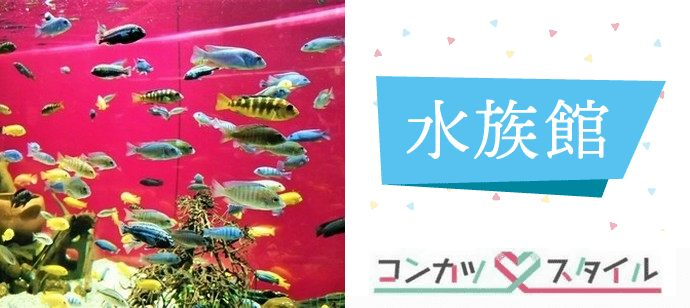 【 すぐに距離がグッと縮まる同世代コン♡ 】 川崎水族館 「 カワスイ 」 散策♪