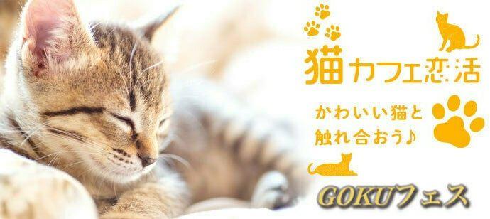 ★30代限定★猫カフェde恋活★1人参加限定♪男女1対1で会話できる♪猫カフェde恋活★ニャンコン★ねこカフェ★