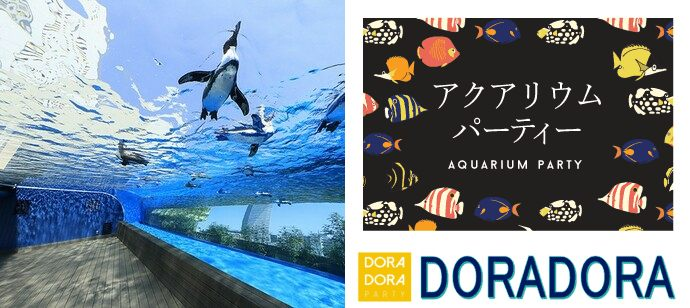 【東京都池袋の体験コン・アクティビティー】ドラドラ主催 2021年4月18日