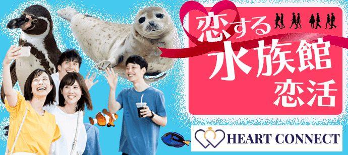 【20代限定】恋活♡恋する水族館コン♡イルカショーも見れる♪inマリンワールド