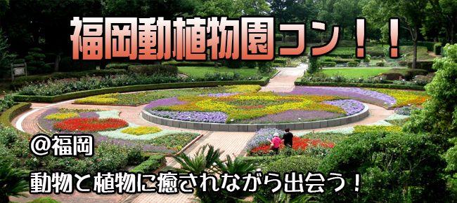 【福岡県その他のプチ街コン】e-venz(イベンツ)主催 2015年6月21日