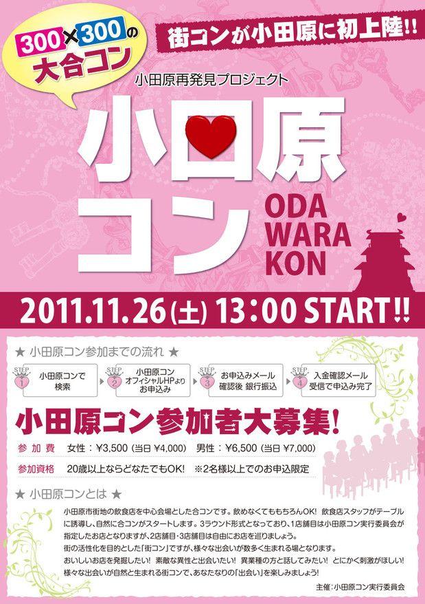 【神奈川県その他のその他】街コンジャパン主催 2012年3月3日