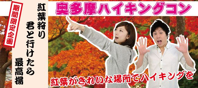 【東京都その他のプチ街コン】ベストパートナー主催 2015年11月29日