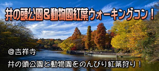 【吉祥寺のプチ街コン】e-venz(イベンツ)主催 2015年11月21日