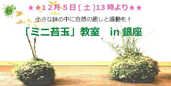 【銀座の自分磨き】株式会社Life Design主催 2015年12月5日