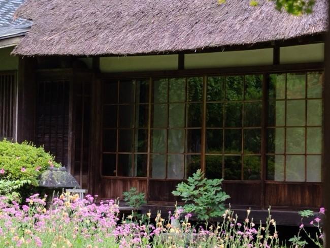お庭が綺麗☆