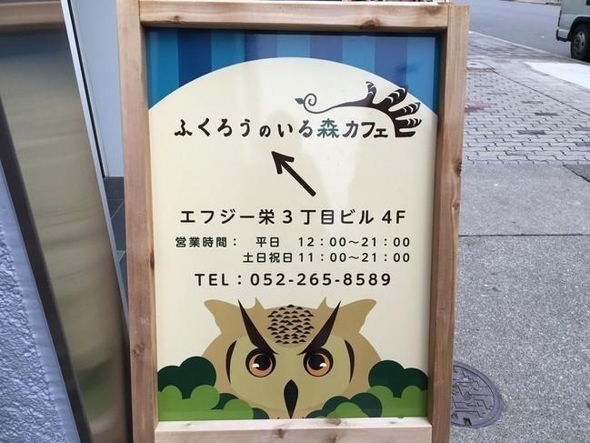 フクロウカフェ