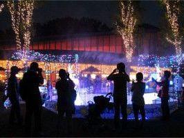 動物園の思い出話で盛り上がる♪| 横浜夏の夜の動物園