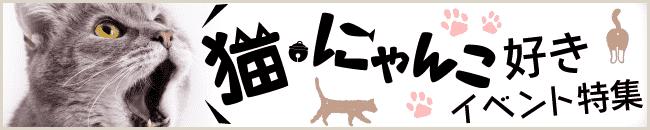猫・にゃんこ好きイベント特集