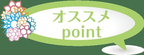 Hsanomiyapoint