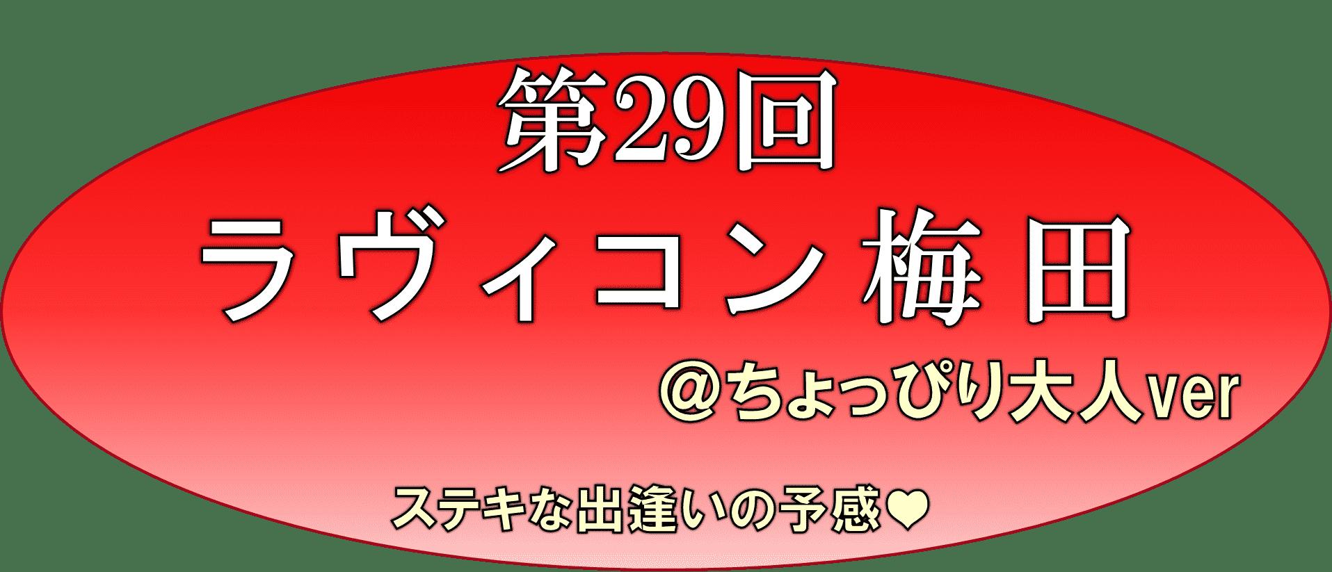 29図08
