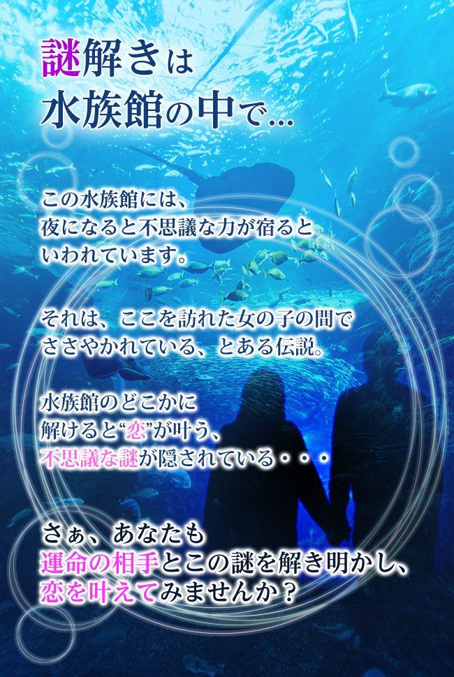 水族館_ストーリー-(1)