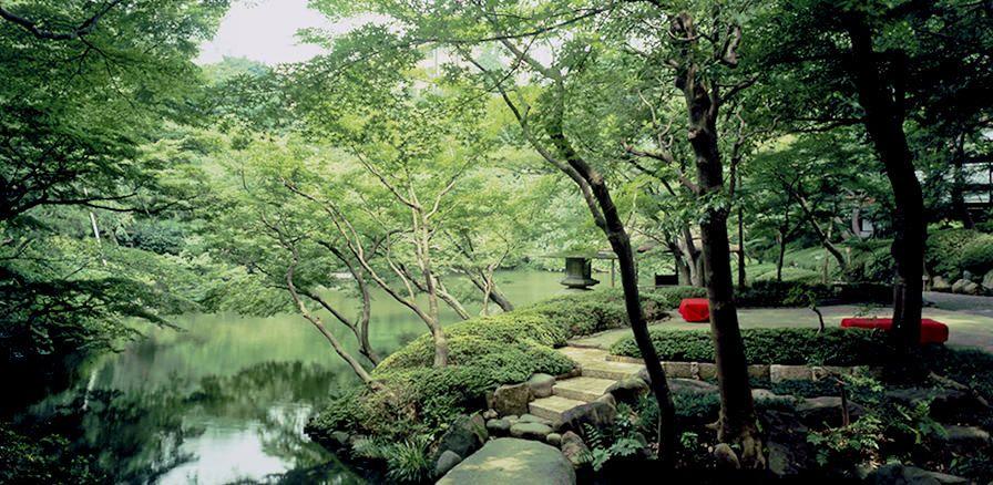photo_garden