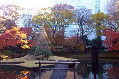 koishikawa_park_02