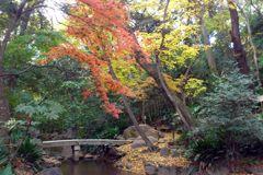meishunotaki_park_02