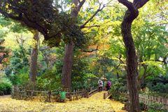meishunotaki_park_03