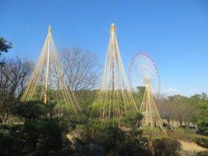葛西臨海公園 ご来園の際は日本庭園の雪吊りをご鑑賞ください。-thumb-540xauto-33016