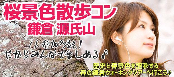 kamakura_sakura_bn_img22