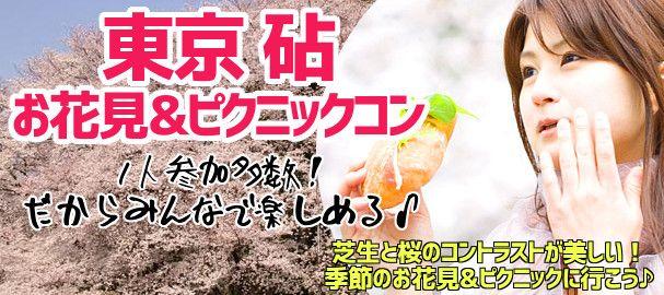 kinuta_hanami_bn_img