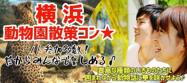 yokohama_zoo_bn_img