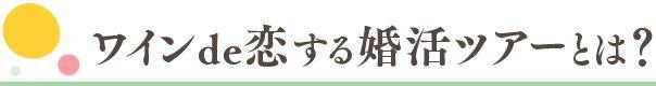 w-koikatsu_r-02