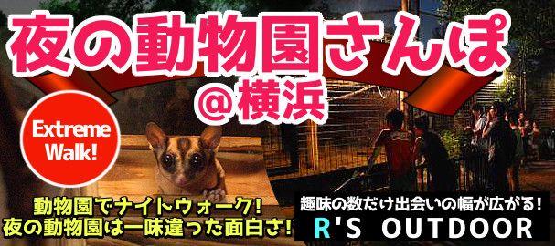 yokohama_zoo_night_bn