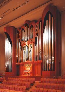 s_organ2